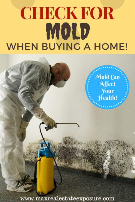 Check For Mold When Buying a Home