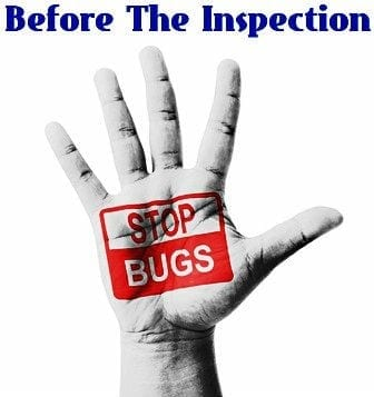 Stop Bugs Before Home Inspection
